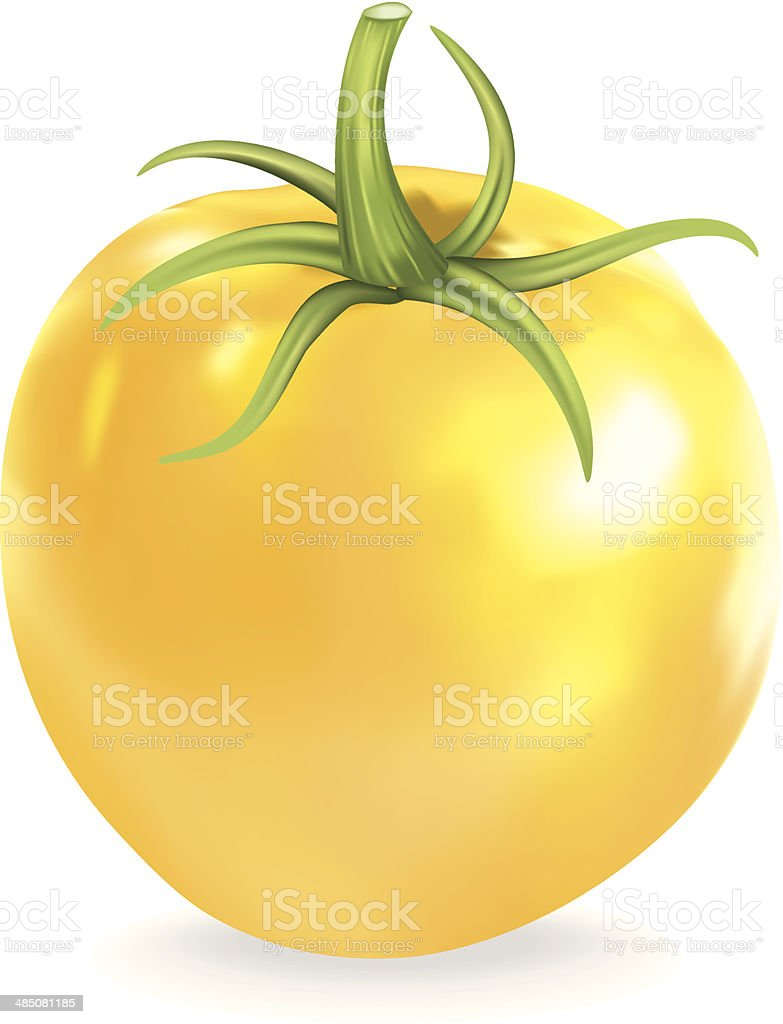 Yellow Heirloom Tomato royalty-free stock vector art