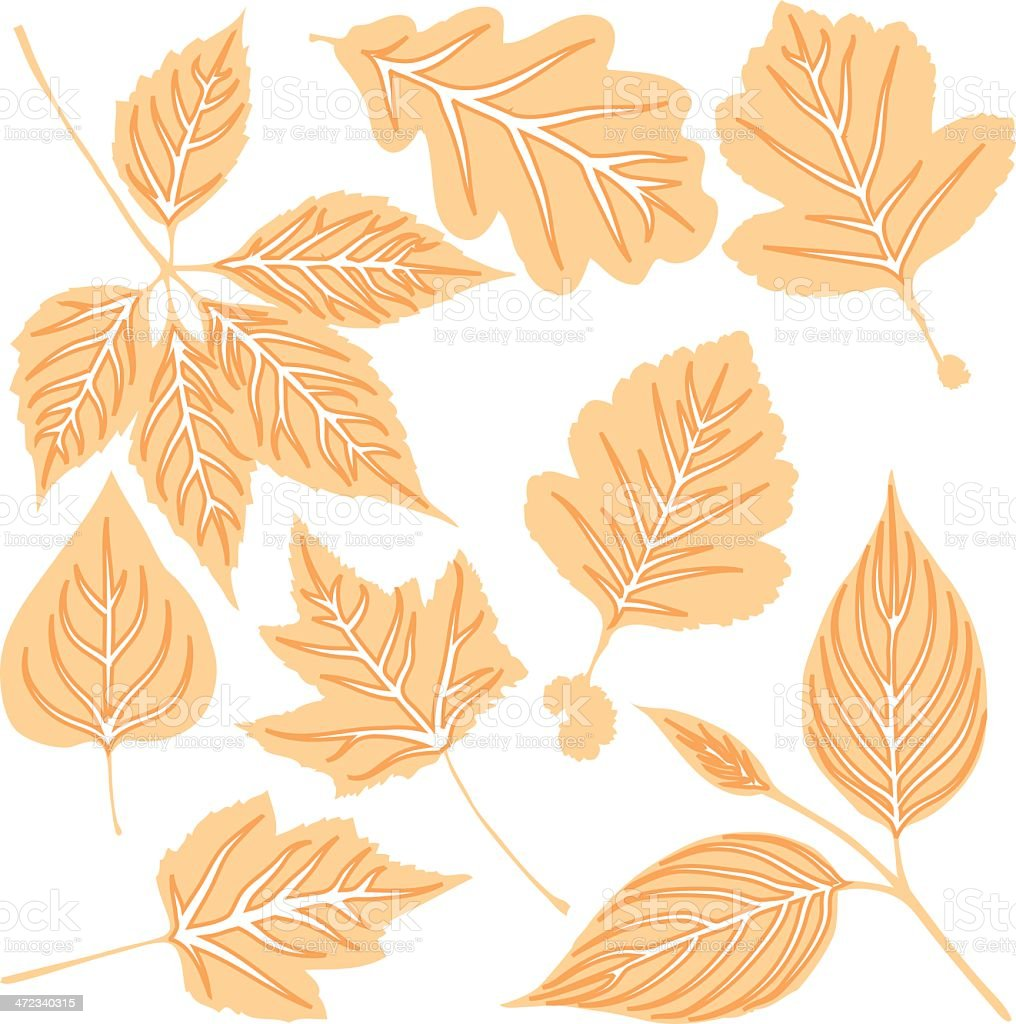 Yellow leaves royalty-free yellow leaves stock vector art & more images of ash tree