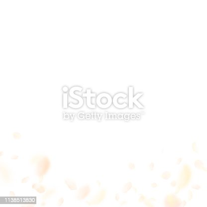 Yellow orange flower petals falling down. Mind-blowing romantic flowers gradient. Flying petal on white square background. Love, romance concept. Classic wedding invitation.