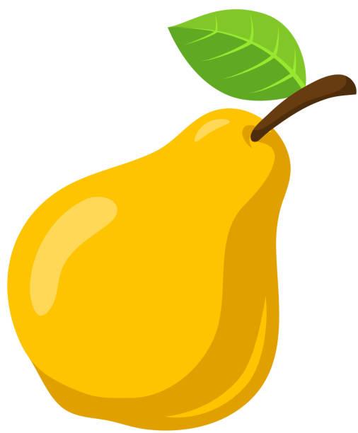 Yellow pear Obst. – Vektorgrafik