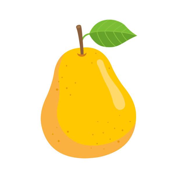 Yellow pear, isoliert auf weißem Hintergrund – Vektorgrafik