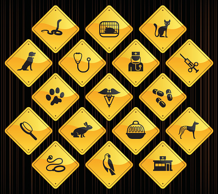 Yellow Road Signs - Veterinary