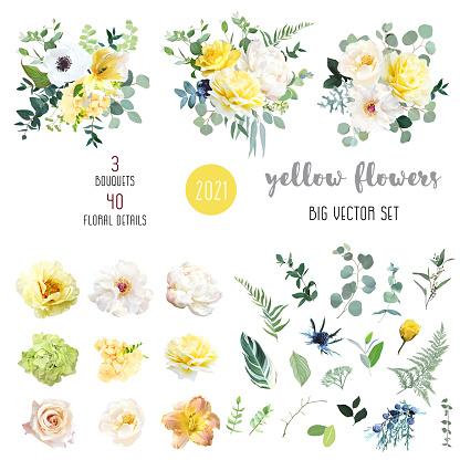 Yellow rose, hydrangea, white peony, lily, anemone, spring garden flowers, eucalyptus