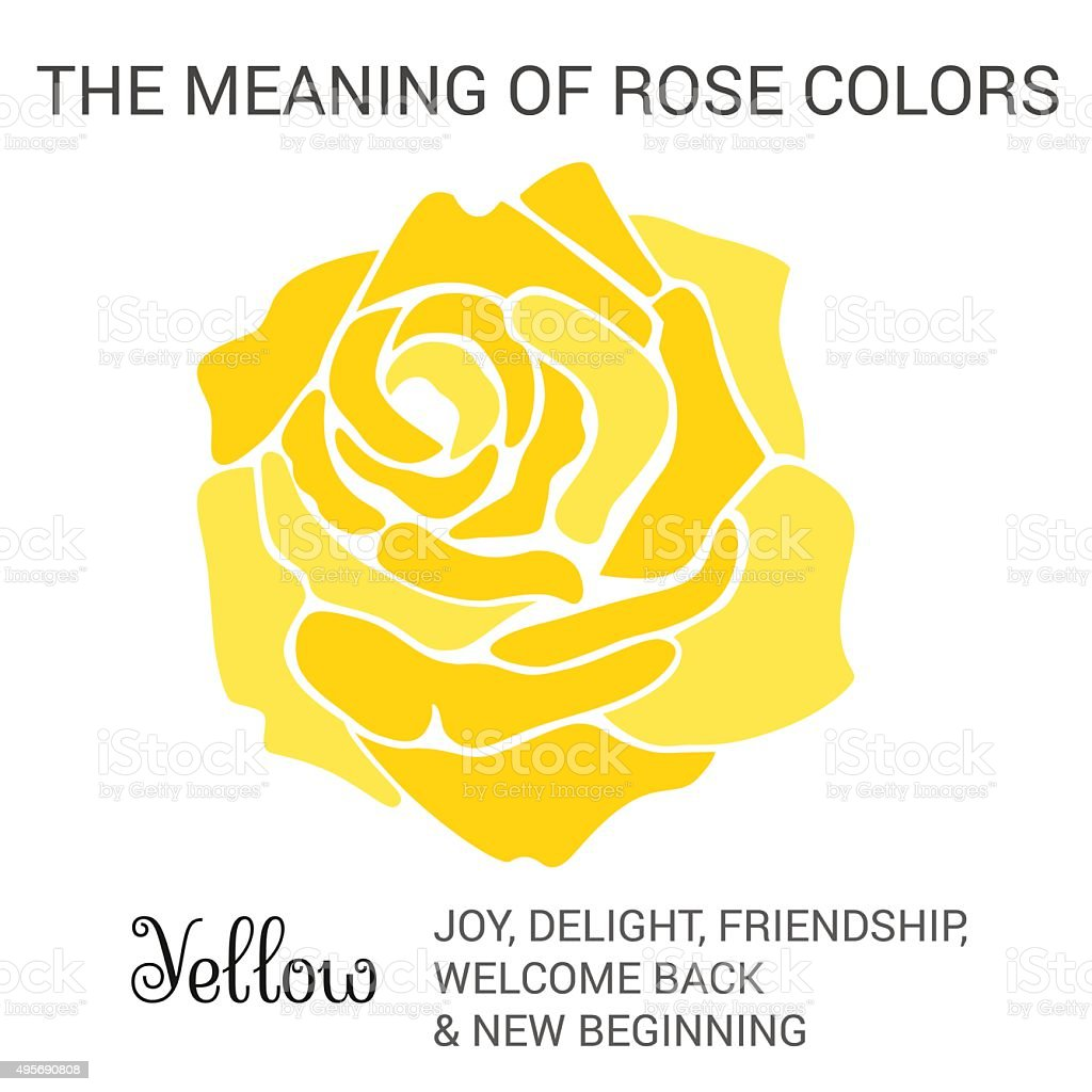 Yellow Rose Stock Vector Art More Images Of 2015 495690808 Istock