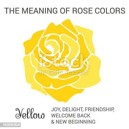 istock Yellow rose 495690808