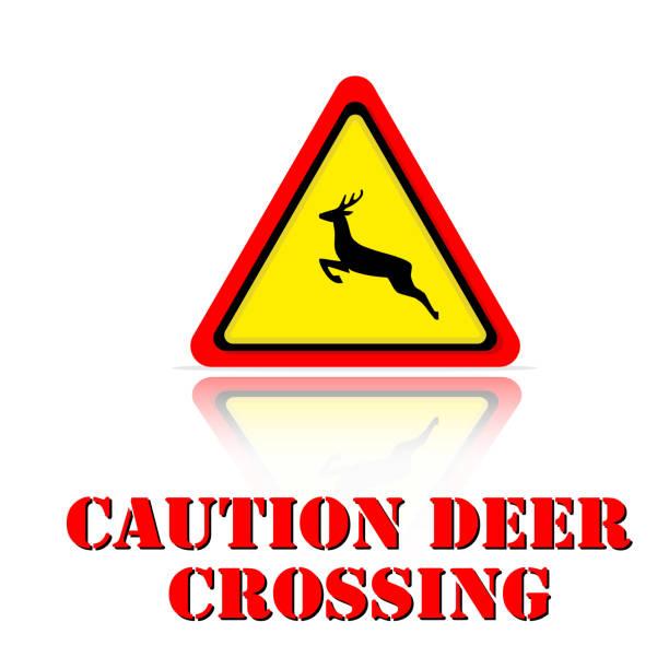 bildbanksillustrationer, clip art samt tecknat material och ikoner med gul varning varning deer crossing ikonen bakgrundsbild vektor - älg sverige