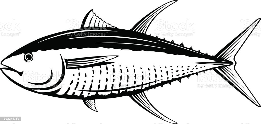 Yellowfin Tuna Black and White Fish vector art illustration