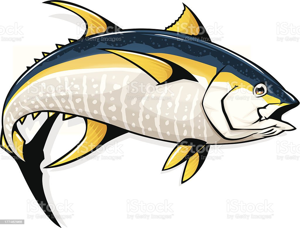 royalty free saltwater fish clip art vector images illustrations rh istockphoto com Shoe Sole Clip Art Sole Tap Shoes Clip Art