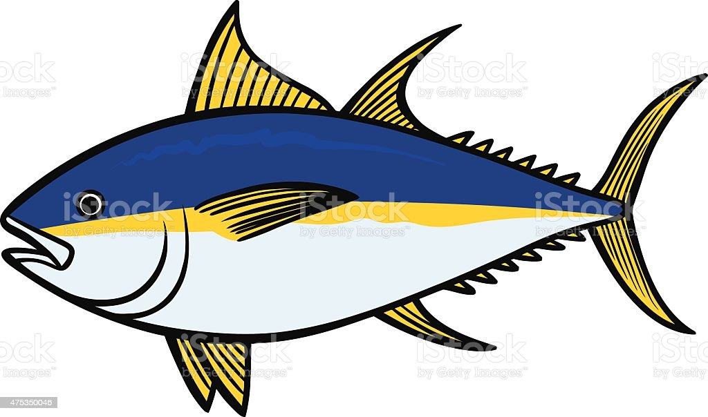 Yellowfin Tuna vector art illustration