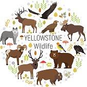 Yellowstone animals moose, elk, bear, wolf, eagle, bison  circle set
