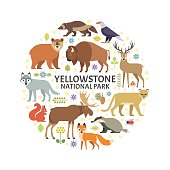 Yellowstone animals