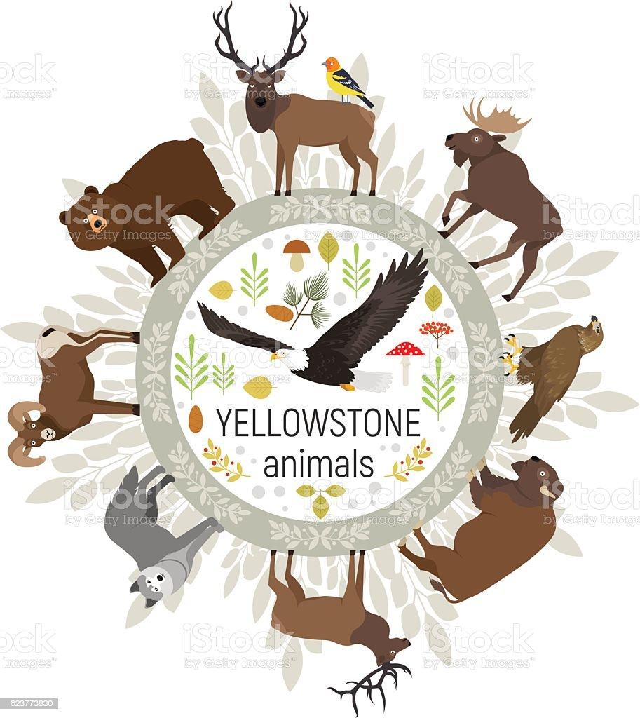 Yellowstone National Park animals moose, elk, bear, wolf, bison, eagle - ilustración de arte vectorial