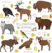 Yellowstone Park animals set moose, elk, bear, wolf, eagle, bison