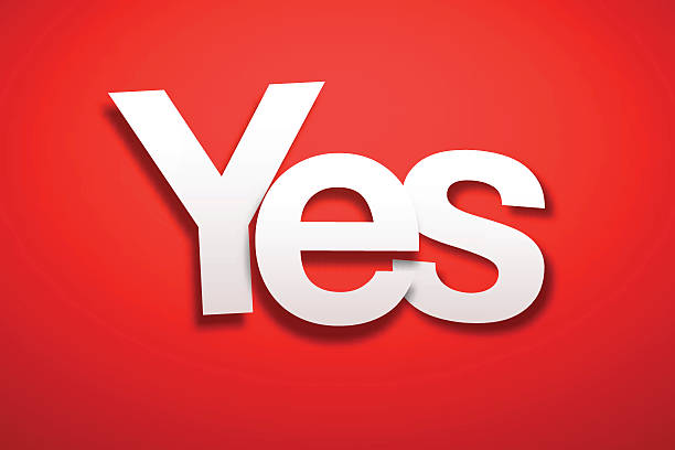 Say yes neon signs say yes text design Royalty Free Vector