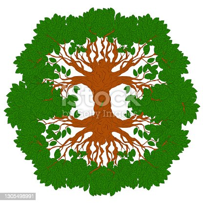 Yggdrasil tree. Celtic symbol of the ancient Vikings. The symbol of the ancient peoples of northern Europe. Norse cosmology, is an immense and central sacred tree.