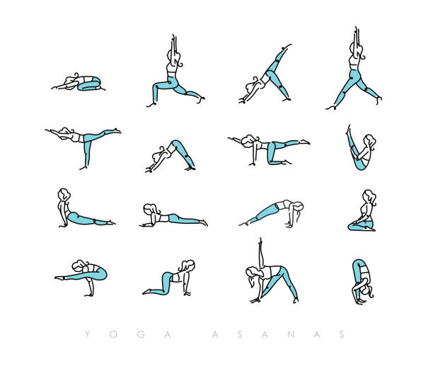 Yoga asanas pen line color Pen line hand drawing girls in yoga asanas in light style drawing with color on white background yoga stock illustrations