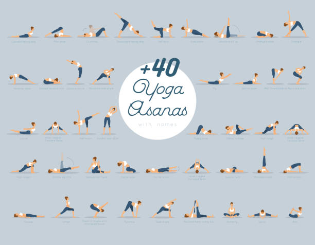 stockillustraties, clipart, cartoons en iconen met + 40 yoga-asana's met namen - rek