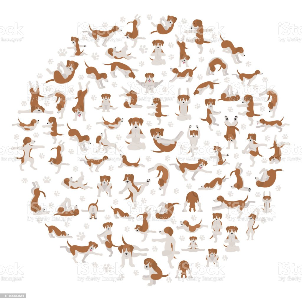 Yoga Dogs Poses And Exercises Doing Clipart Funny Cartoon Poster Design Stock Illustration Download Image Now Istock
