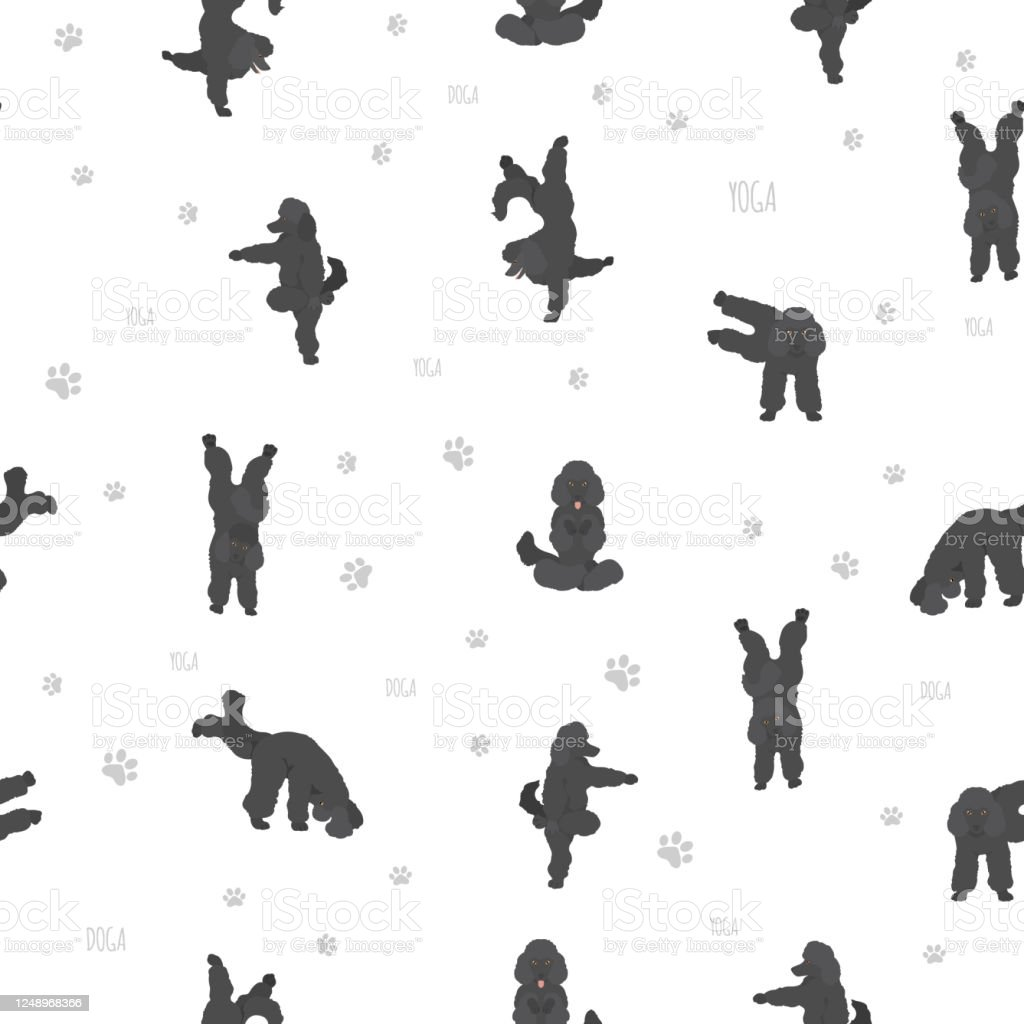 girl walking poodle Clipart   +1,566,198 clip arts