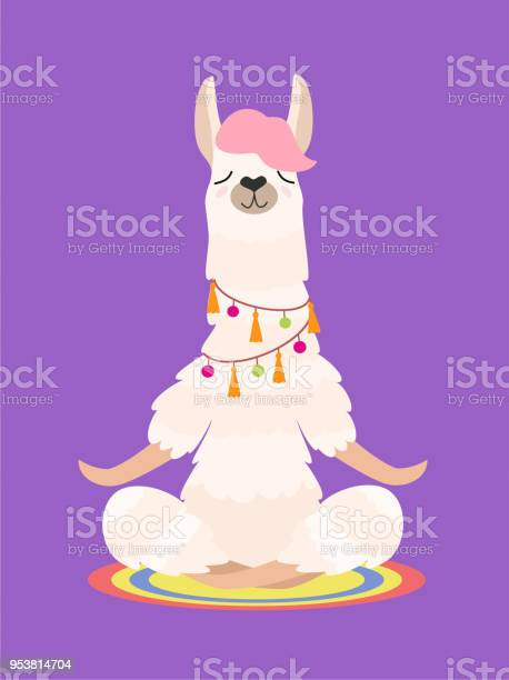 Yoga Llama Meditates Isolated On Purple Background Vector Illustration - Stockowe grafiki wektorowe i więcej obrazów Alpaka
