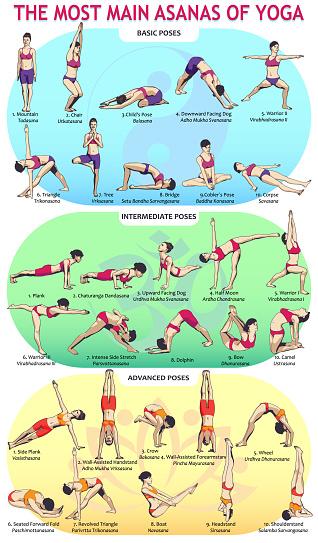 30 Yoga Main Asans