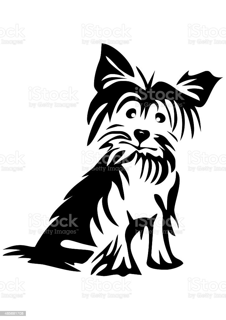 yorkshire Terrier vector art illustration