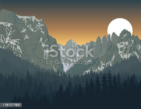 Yosemite National Park with woodland forest