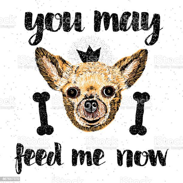 You may feed me now sign with cute smiling but hungry dog lettering vector id867657370?b=1&k=6&m=867657370&s=612x612&h=slh8qema4go a 12zoilhwa8vhijmgk2n8gqty8i95g=