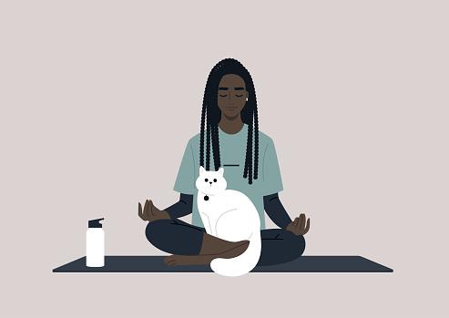 Clipart Lustige Yoga Katze Bilder Hochauflosende Premium Bilder