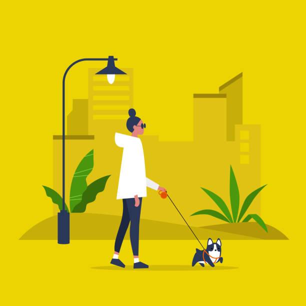 stockillustraties, clipart, cartoons en iconen met jong vrouwelijk personage wandelen met een hond aan de leiband. recreatie. outdoor. moderne levensstijl. platte bewerkbare vector illustratie, clip art - stoep