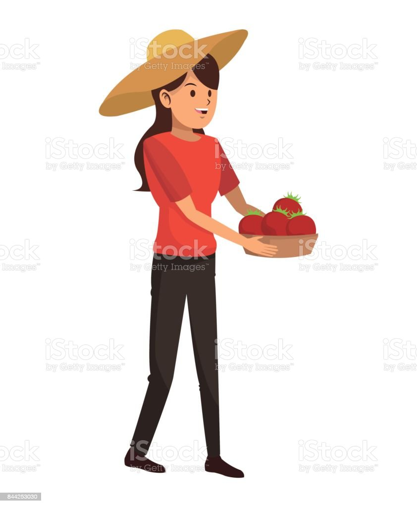 young girl hat and basket tomato harvest vector art illustration
