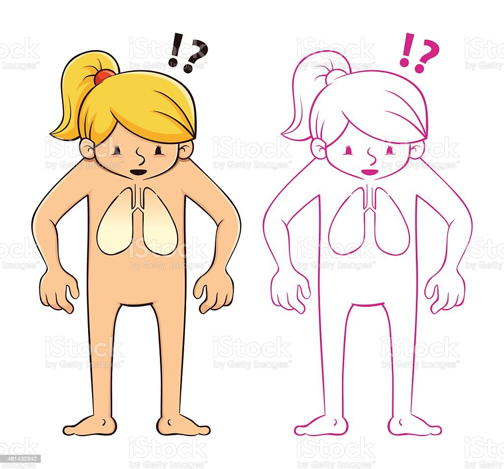 Young Girl Looking At Her Body Anatomy And Lung Stock Vector Art ...