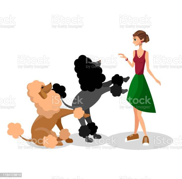 Young girl playing with poodles flat illustration vector id1134123813?b=1&k=6&m=1134123813&s=612x612&h=gv9b0 0 5gjzyxcwlibr5zfti8v7l hv0uqyzwbnveg=