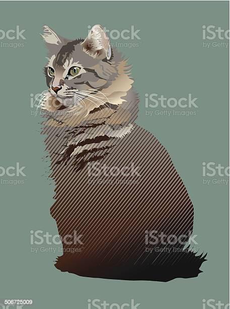 Young maine coon cat vector id506725009?b=1&k=6&m=506725009&s=612x612&h=m4g6weoqmogtdcltma6hjkxf6wuidtv9cnonvxfu2os=