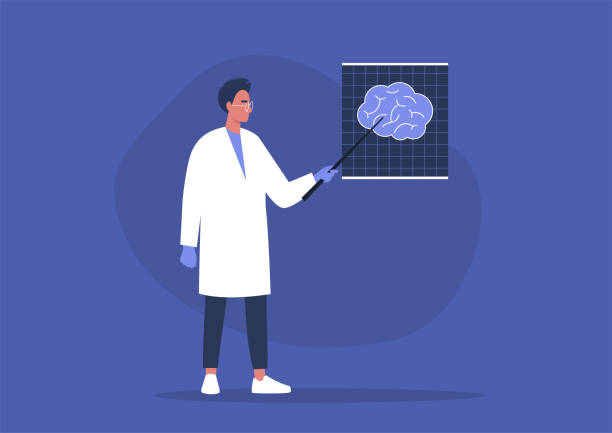 A young male doctor pointing at the x-ray image of human brain, cognitive science A young male doctor pointing at the x-ray image of human brain, cognitive science biohacking stock illustrations