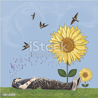istock Young Man Lying in Grass Listening to Music Near Sunflowers 158120329