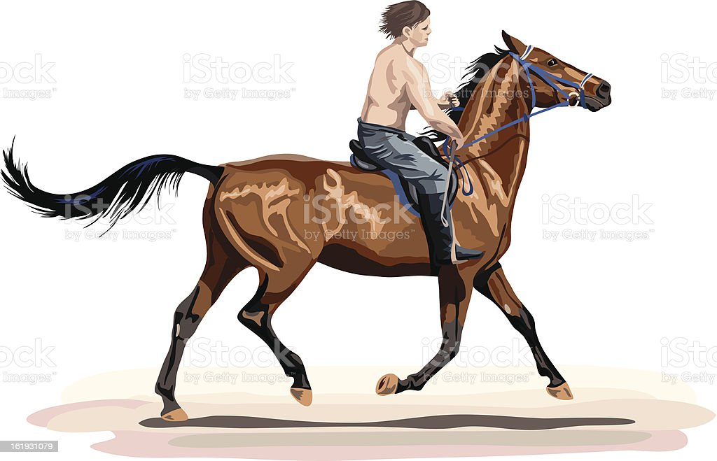 young man riding on golden horse royalty-free stock vector art