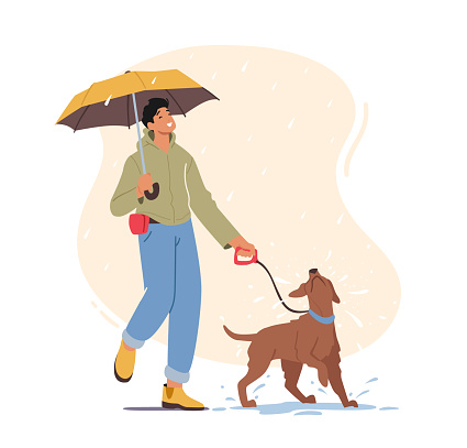 Young Man Walking with Playful Dog at Rainy Weather, Male Character with Umbrella Walk with Pet at Morning, Recreation