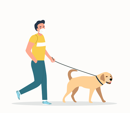 Young  man wearing face masks walking with a dogs isolated. Vector flat style illustration