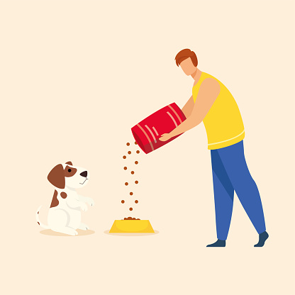 Young man who cares about feeding pets. Vector of man filling dog food box of breed dog food box. Illustration of isolated icon on flat background in cartoon style.