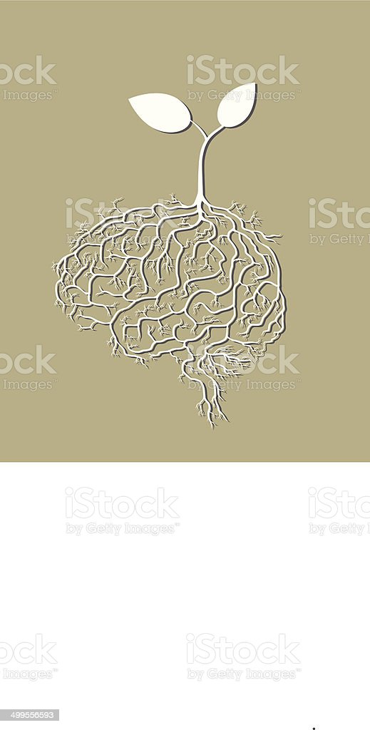 Young plant with brain root, vector vector art illustration