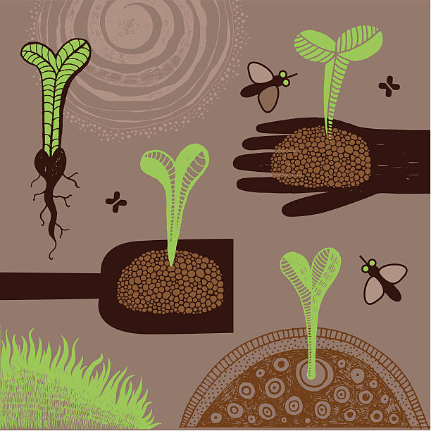 Young plants vector art illustration