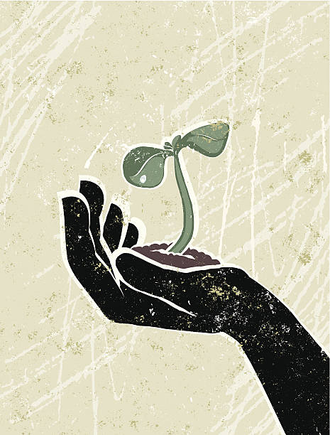 Young Seedling in a Protective Hand vector art illustration