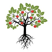 Tree with Green Leafs, Roots and Red Apple. Vector Illustration.
