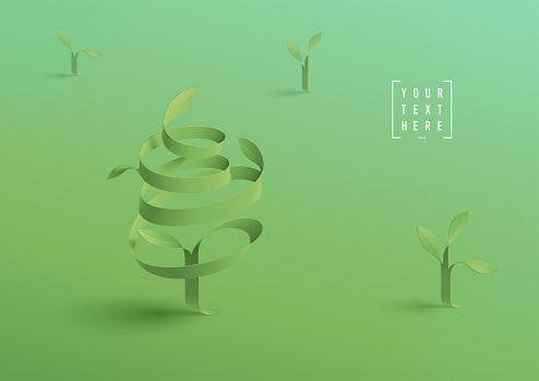 young trees background