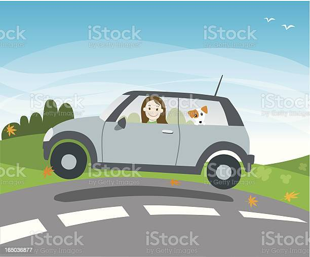 Young woman driving with dog vector id165036877?b=1&k=6&m=165036877&s=612x612&h=hkulgab3ojiwggbfbcntrgsoeaxbkvjtfsfaca8bvp4=