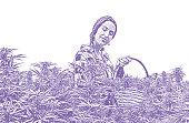 Young woman farmer harvesting hemp plants