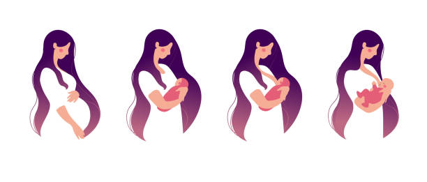 ilustrações de stock, clip art, desenhos animados e ícones de a young woman holds a baby in her arms and breastfeeds. set for animation about breastfeeding. flat cartoon design. vector illustration isolated on a white background. - breastfeeding