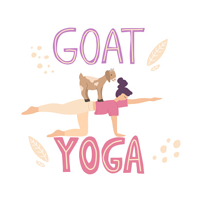 Young woman practicing goat yoga. Cute girl character performing yoga with animals..Stock vector illustration isolated on white background. Hand Drawn picture with lettering quote.