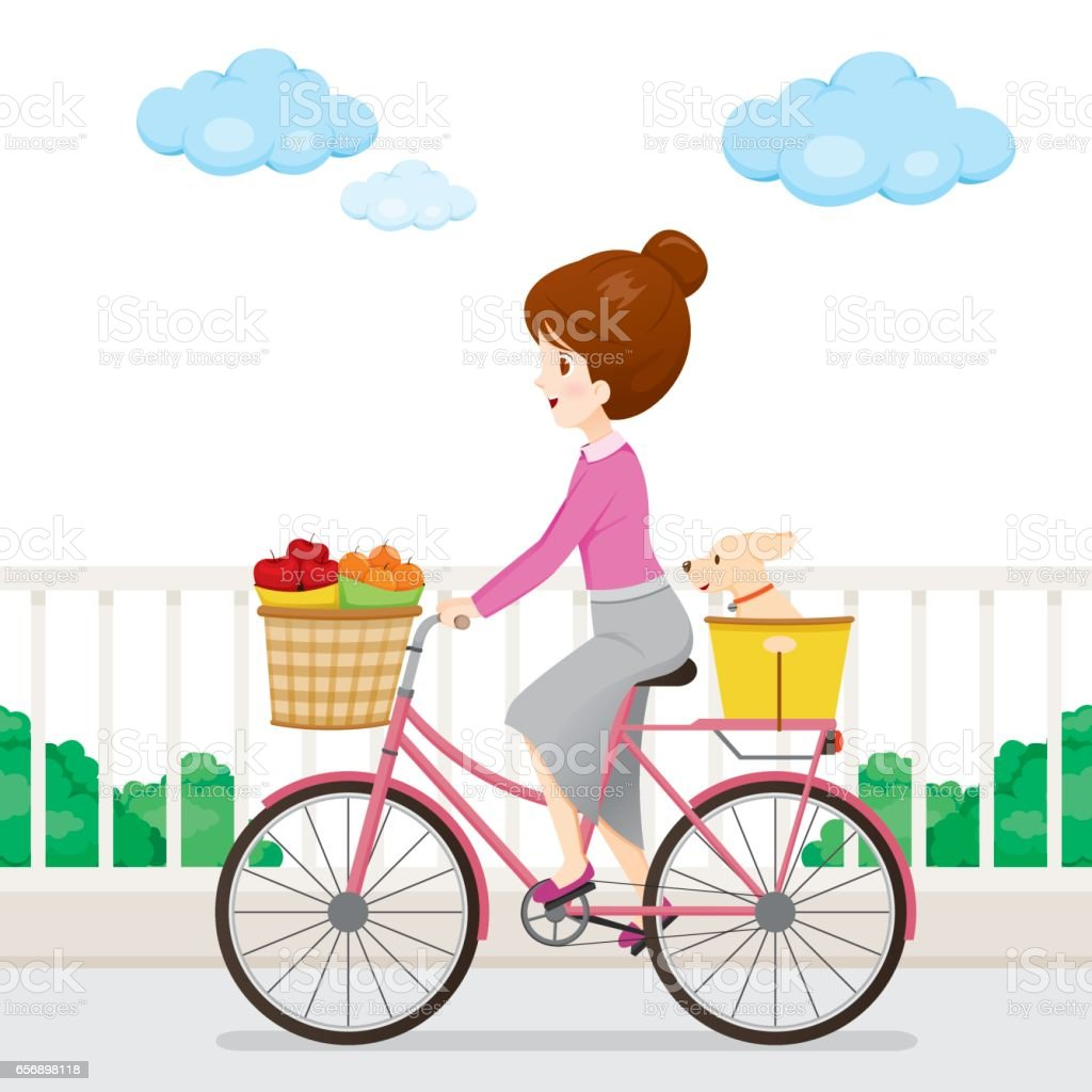 Young Woman Riding Bicycle With Fruits And Dog vector art illustration